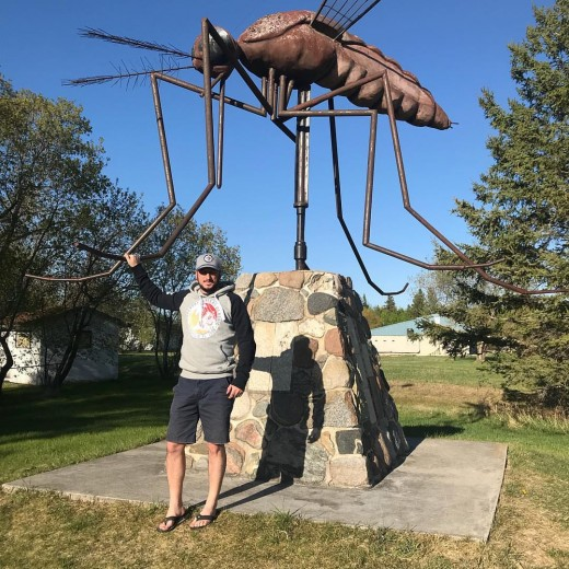 The Town of Kamarno, Manitoba lays claim to the dubious title of the World's Mosquito Capital and has backed up its boast with this statue.
