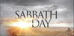 Keeping the Sabbath (Even Jellyfish Sleep)