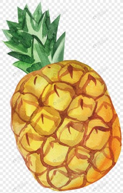Legend of the Pineapple