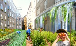 Urban Farming - Can it be a Profitable Business?