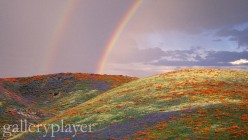 may be as varied as the colors of the rainbow. In general, it helps us cope better in our day to day lives