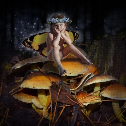 Mad Mushroom Fairy photo composite