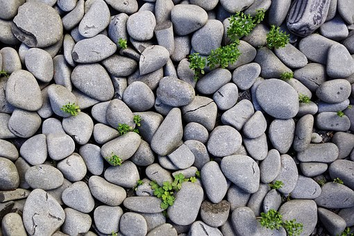 Smooth rocks are pretty and easy on the foot