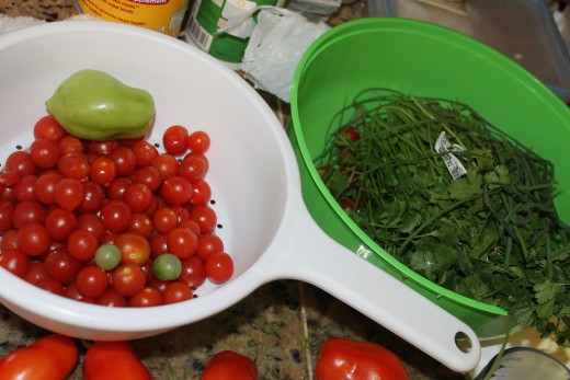 Variety of picked tomatoes and herbs