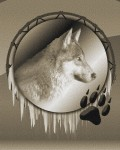 Wolf Animal Spirit and the Power of Instinct