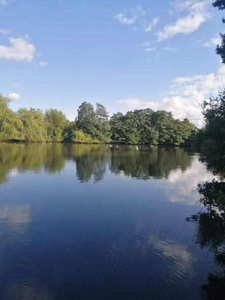 Elmdon Park Lake taken by Paula Harvey.