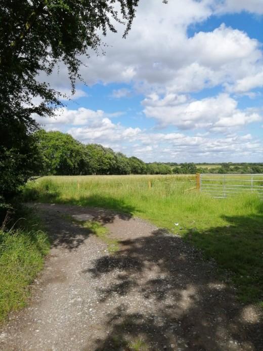 The fields that surround Castle Hills Farm.