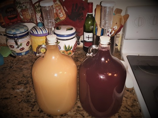 First round wine in demijohns