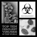 Top Ten Deadliest Viruses in the World