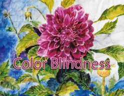 Color Blindness All Around Us