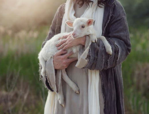 I am the good shepherd; the good shepherd lays down His life for the sheep. - John 10:11