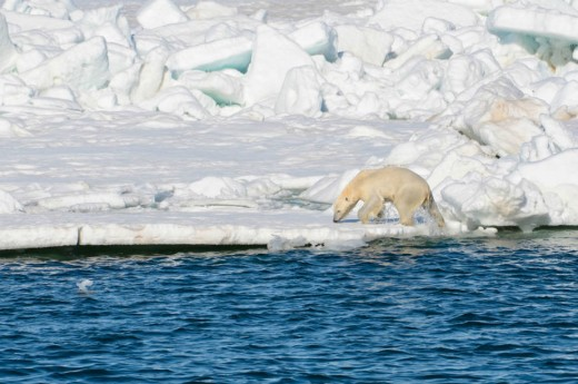 Alaska ice melt at a rapid pace