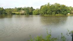 A Visit to Holy Lakes and Ponds near Kumbla