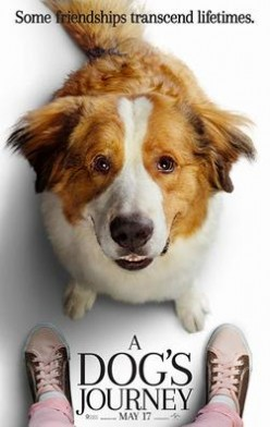 A Dog's Journey (2019) Movie Review