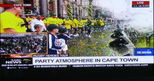 Springboks in front of Parliament.
