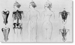 Corsets, Back Pain and Breathing