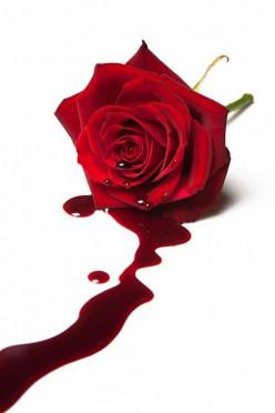 Innocence Bleeds - Flash Fiction