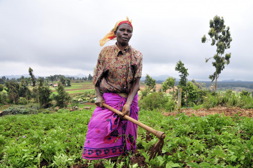 Black woman: A Rural Farmer
