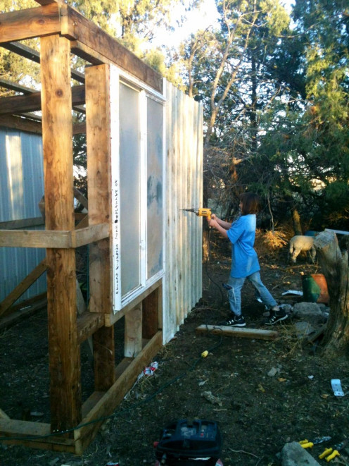 Building a lambing shed, pole barn style, is Tyger's first major construction project. She and Billy did most of this shed themselves in a day.