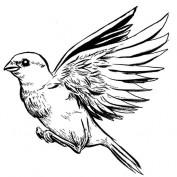 EssieZ profile image