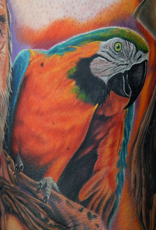 Orange Parrot Tattoo