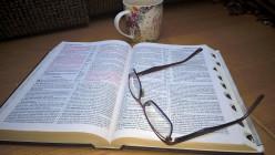 A Study Of Matthew's Gospel Chapter 8, Part 4