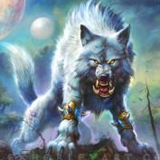Xavier Ludwig profile image