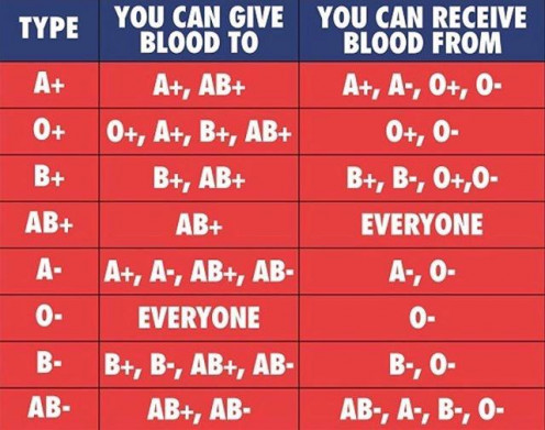 Blood group compatibility before transfusion