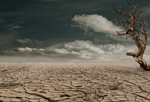 desert drought, Image by Marion Wunder from Pixabay