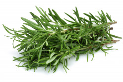 Rosemary: January Herb of the Month