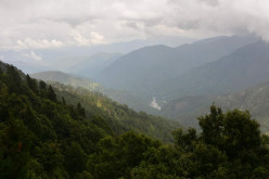 Things To Do In Nainital-A Popular Hill Station In India