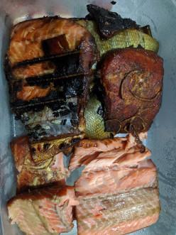 Salmon - Home Smoking