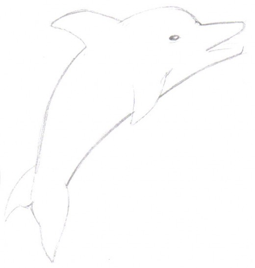 A loose and light dolphin sketch of the main features.