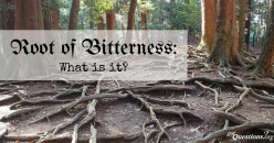 Do Not Allow Root of Bitterness to Spring up in You