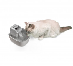 Are these Popular Cat Products Worth It?
