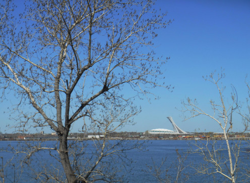 Olympic Stadium of Montreal seen from Longueuil