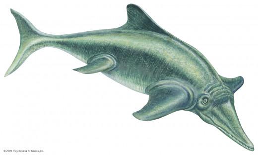 Artistic diagram of Ichthyosaurs