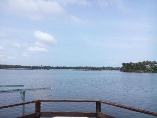 Bolgoda lake in Moratuwa