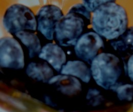 Blueberries / E. A. Wright 2009