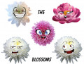 Meet the Blossoms 3