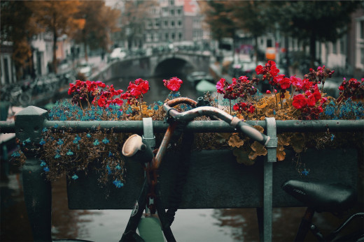 Amsterdam's remarkable charm is on display throughout all of these tourist attractions.