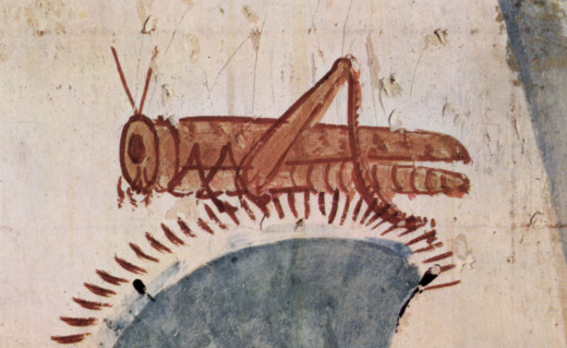 A locust illustrated in an ancient Egyptian tomb