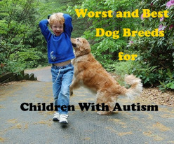 15 Worst Dog Breeds for a Child on the Autism Spectrum, and 7 of the Best