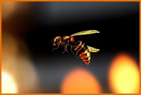 Bee Abstract