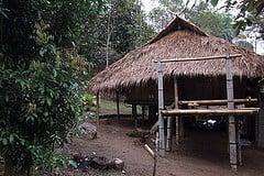 Bamboo house.