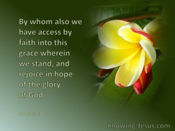 What We Rejoice In
