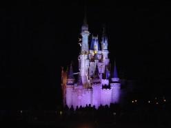 Reasons to Visit Disney