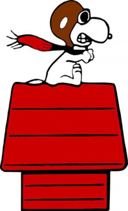 Snoopy would have looked much cooler if he'd been wearing a leather bomber jacket.