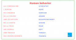 Most Interesting Facts About Human Behaviors