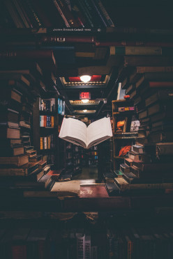 Ingram Books Creates Guideline To Thwart Unscrupulous Writers